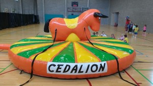 rodeo_cedalion
